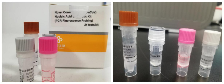 核酸检测试剂盒